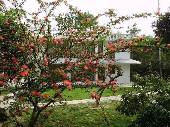 Salna Orchard, Gazipur, Bangladesh, Bangladesh hostels and hotels