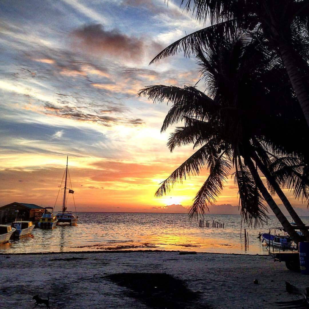 Go Slow Guesthouse, Caye Caulker, Belize, Belize hotels and hostels