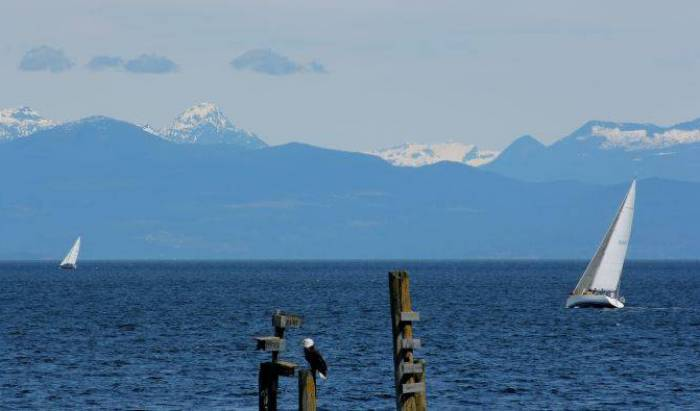 Vancouver Island Ele's Escape BB - Get low hotel rates and check availability in Nanaimo, hotel bookings 17 photos