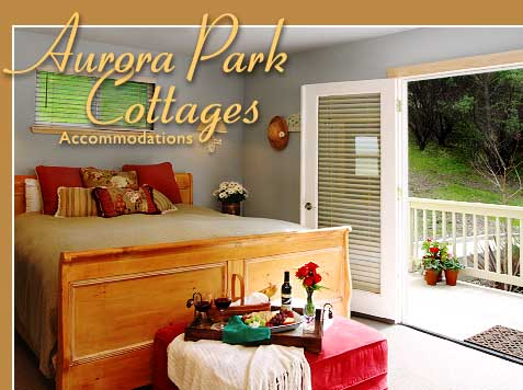 Aurora Park Cottages, Calistoga, California, how to select a hotel in Calistoga