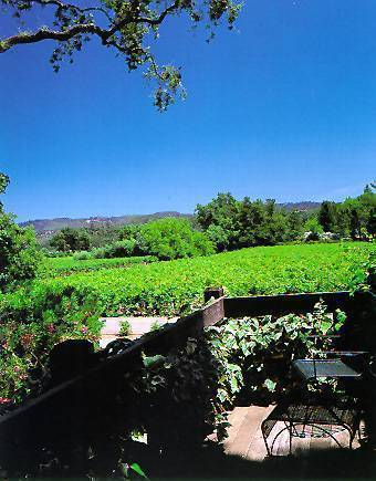 Shady Oaks Country Inn, Napa, California, California hotels and hostels