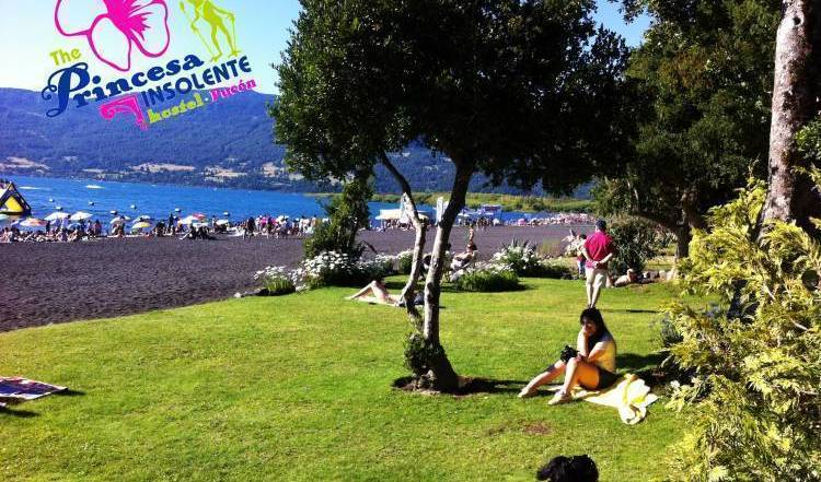 The Princesa Insolente Hostel - Search for free rooms and guaranteed low rates in Pucon 16 photos