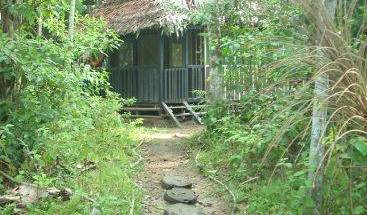Omshanty Jungle Lodge - Search available rooms for hotel and hostel reservations in Leticia 31 photos