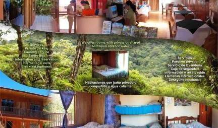 Hostel-Cabinas Monteverde Paraiso - Get low hotel rates and check availability in Santa Elena, holiday reservations 144 photos