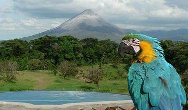 Hotel Arenal Lodge - Get low hotel rates and check availability in Volcan Arenal 28 photos