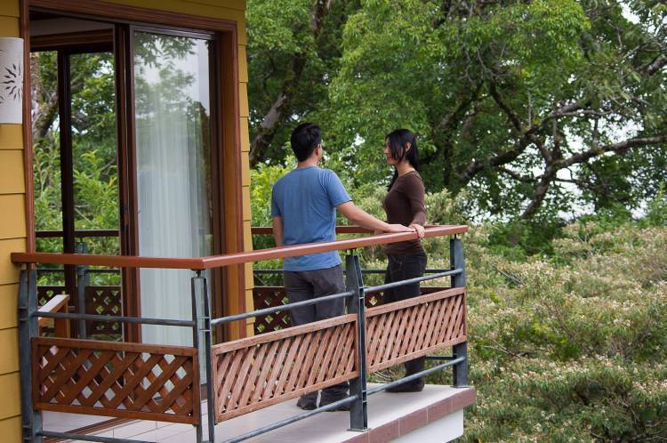 Hotel Ficus, Monte Verde, Costa Rica, Costa Rica hotels and hostels