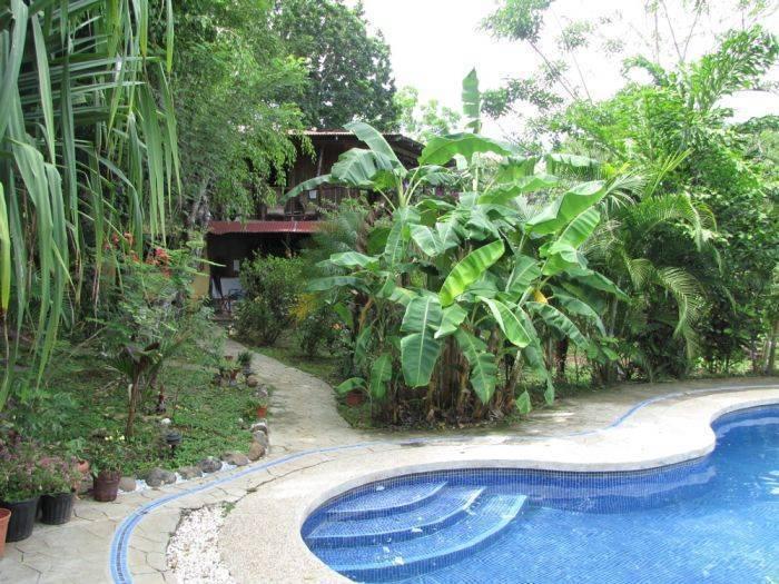 Las Palmeras de Delicias, Cobano, Costa Rica, Costa Rica hotels and hostels