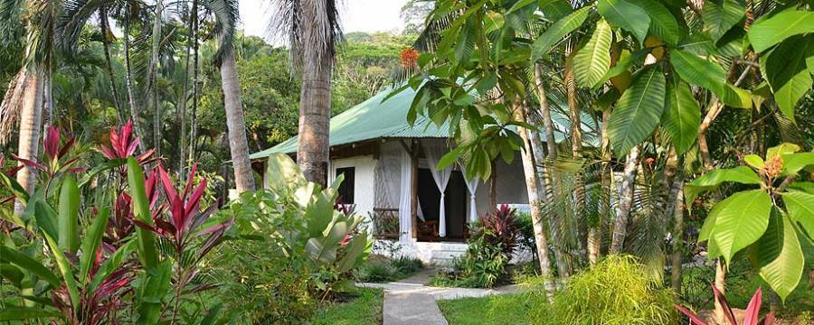 Wellness Center, Dominica, Costa Rica, Costa Rica hotels and hostels