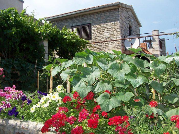 Apartment Solta, Stomorska, Croatia, Croatia hotels and hostels