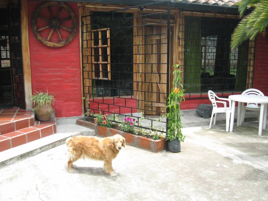 Arie's Cabin Hostel and Bike Company, Puembo, Ecuador, Ecuador hotels and hostels