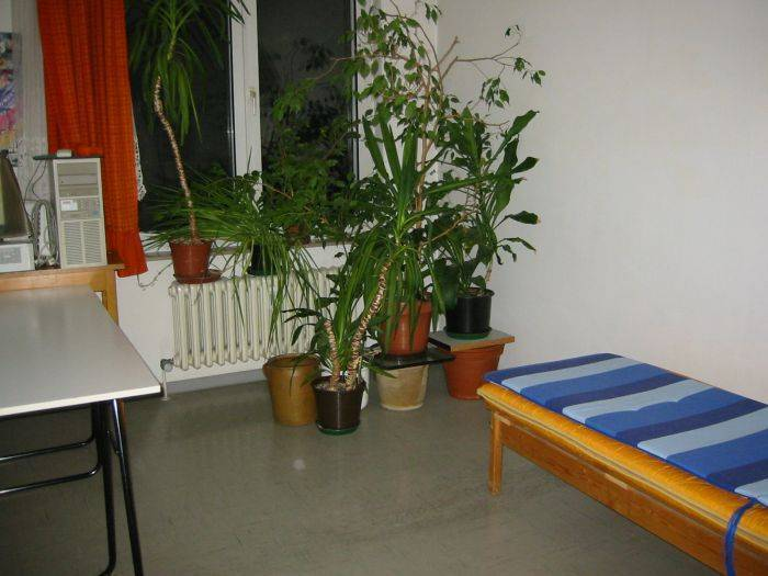 Chimaysaberlin Bed And Breakfast, Berlin, Germany, Germany hotels and hostels