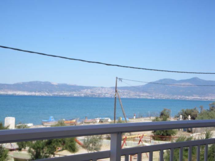 Anemos Hotel, Agia Trias, Greece, hotels in cities with zoos in Agia Trias