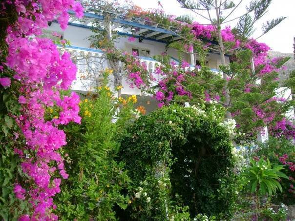 Angelika Hotel and Studios, Alinda, Greece, hotels and rooms with views in Alinda