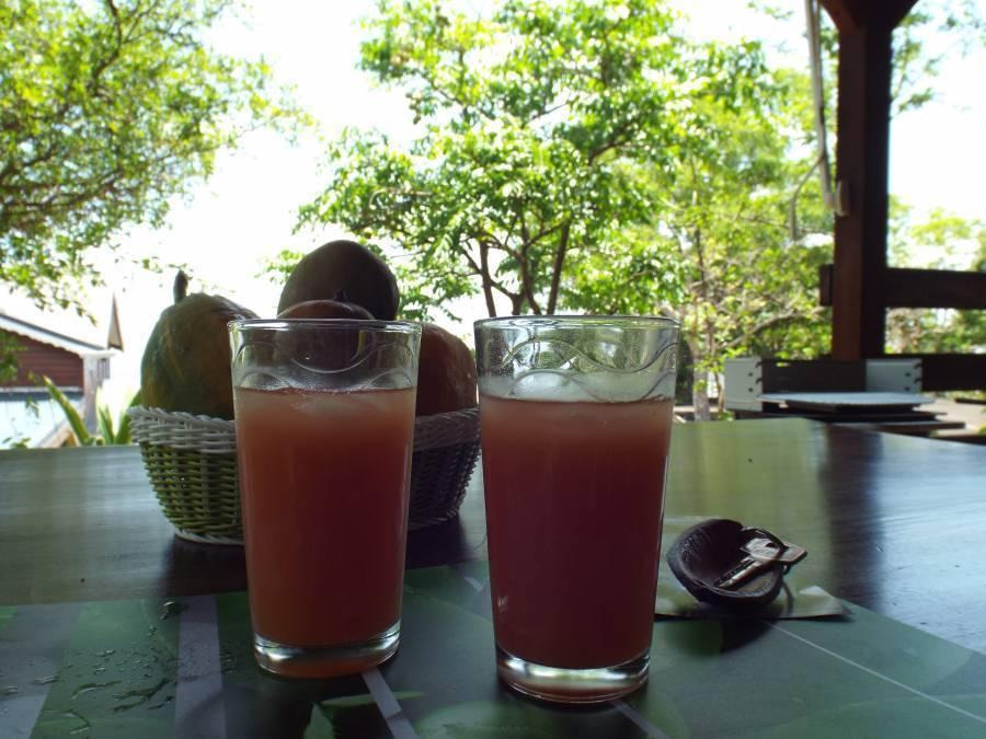 Les Villas de Tisource, Pointe-Noire, Guadeloupe, Guadeloupe hostels and hotels
