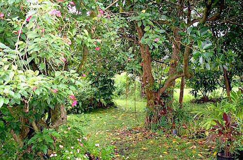 Hana Maui Botanical Gardens BnB, Hana, Hawaii, Hawaii hotels and hostels