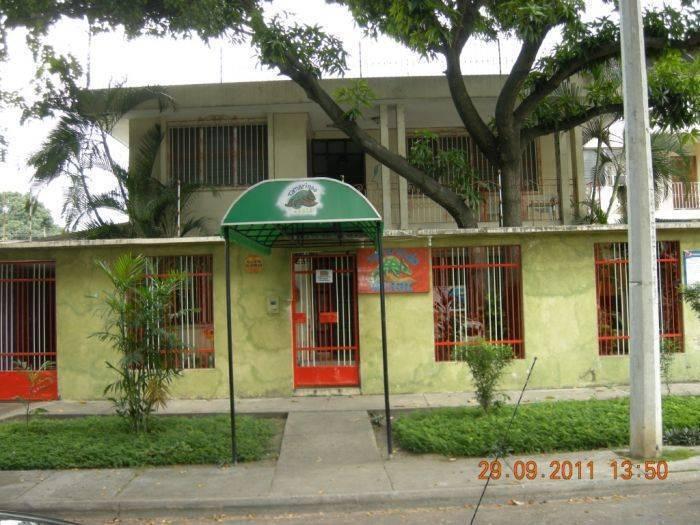 Tamarindo Hostel, San Pedro Sula, Honduras, Honduras hotels and hostels