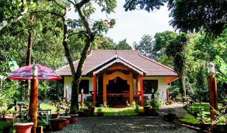 Canaane Estate - Get low hotel rates and check availability in Idukki 11 photos