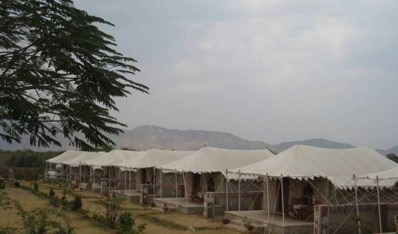 The Pushkar Bagh Resort 6 photos