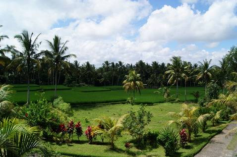 Bhanuswari Resort, Banjar Tengkulak Kelod, Indonesia, Rejse og hotel anbefalinger i Banjar Tengkulak Kelod