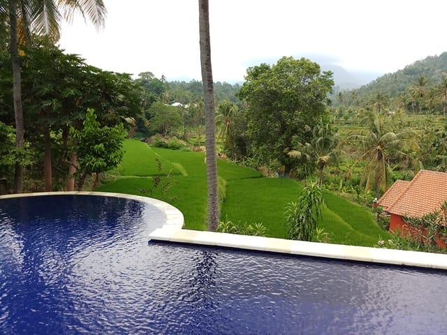 Lotus Guesthouse Sudaji, Denpasar, Indonesia, hotel bookings at last minute in Denpasar