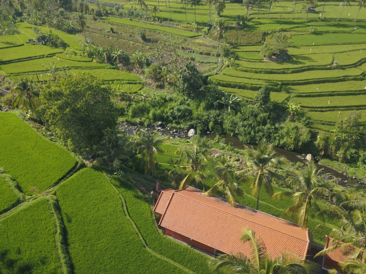 Lotus Guesthouse Sudaji, Denpasar, Indonesia, Indonesia hotels and hostels