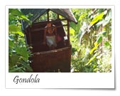Nandini Bali Jungle Resort and Spa, Ubud, Indonesia, what is there to do?  Ask and book with us in Ubud