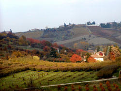 Agriturismo Rupestr, Asti, Italy, top travel website for planning your next adventure in Asti