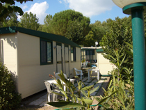 Camping Village I Pini, Rome, Italy, Italy hotels and hostels