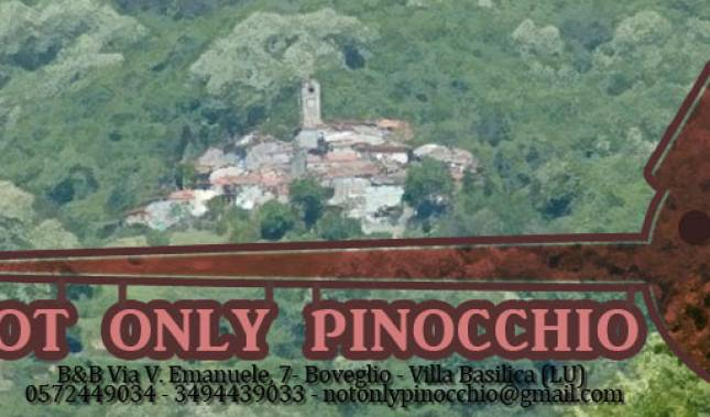 BnB Not only Pinocchio - Get low hotel rates and check availability in Lucca 12 photos