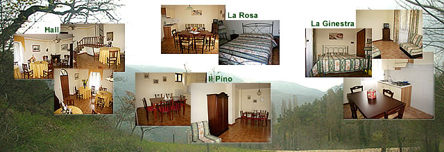 Holiday House Ruscello, Ceselli - Scheggino, Italy, hotels with kitchens and microwave in Ceselli - Scheggino