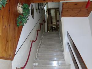 Hostel Italia, Reggio Emilia, Italy, stay in a hotel and meet the real world, not a tourist brochure in Reggio Emilia
