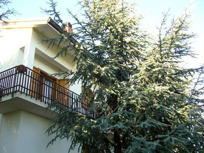 Villa Caterina, Nicolosi, Italy, hotels, special offers, packages, specials, and weekend breaks in Nicolosi