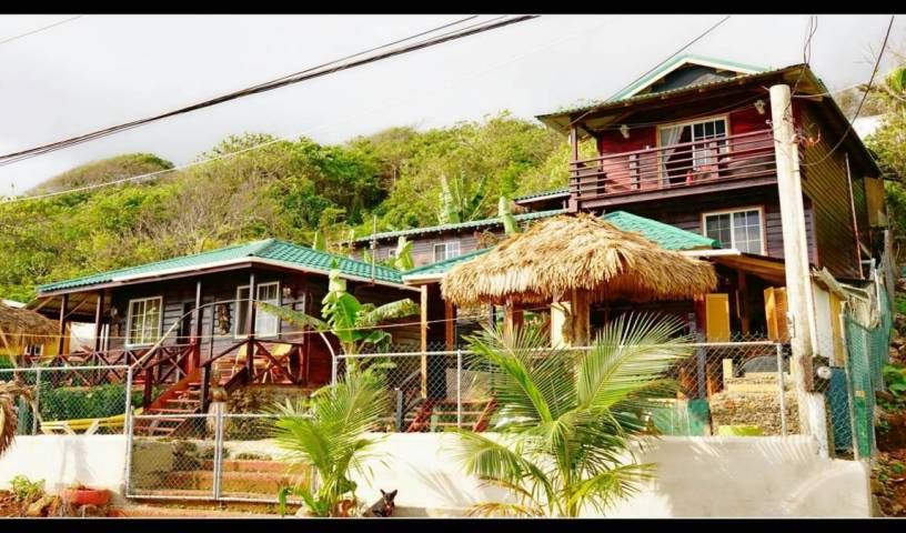 Villa Rasta - Search available rooms for hotel and hostel reservations in Long Bay 26 photos