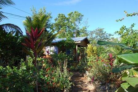Judy House Cottages and Rooms, Negril, Jamaica, outstanding holidays in Negril