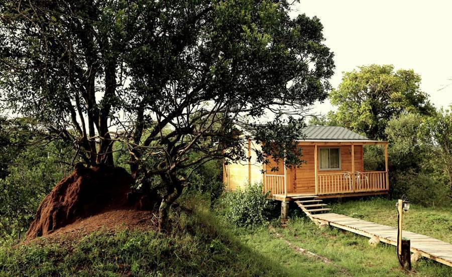 Jambo Mara Safari Lodge, Narok, Kenya, Kenya hotels and hostels
