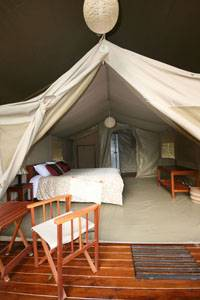 Wildebeest Camp, Nairobi, Kenya, Kenya hotels and hostels