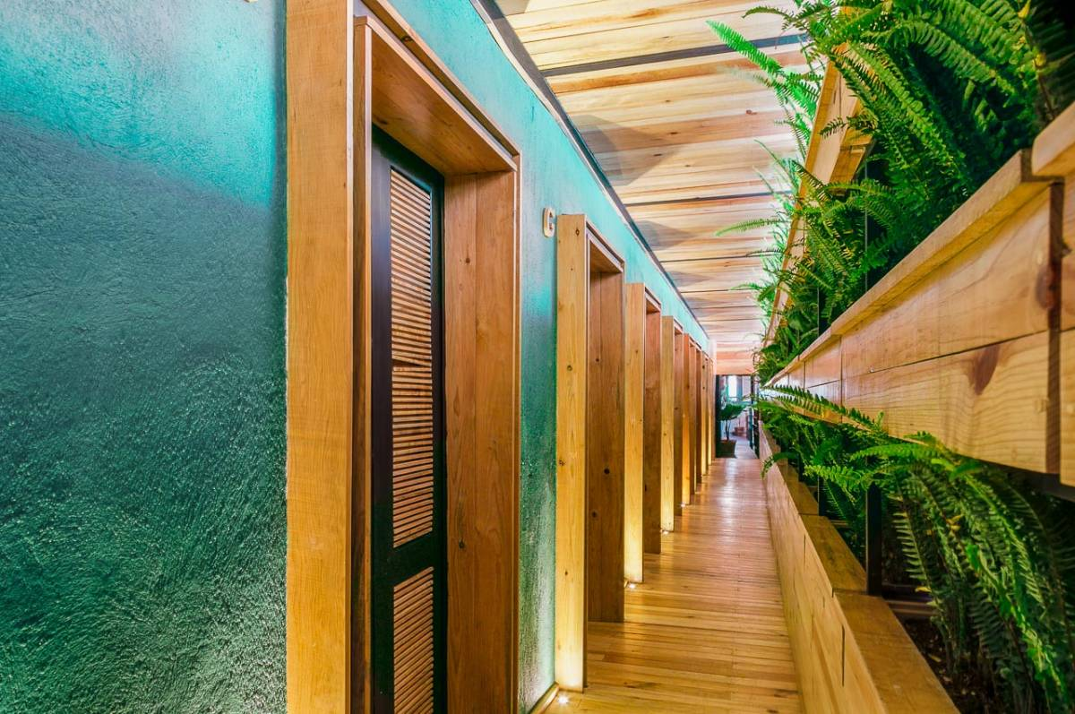 The Foodie Hostel, Mexico City, Mexico, hotel and hostel world accommodations in Mexico City