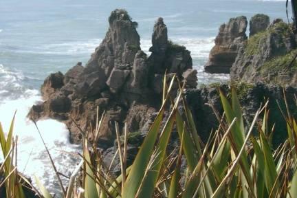 Pyramid Farm New Zealand, Westport, New Zealand, Erschwingliche Preise für Hotels und Hostels im Westport
