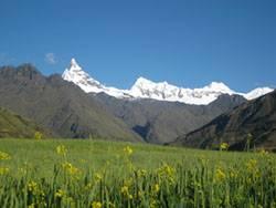 Andes Lodge Peru, Yanama, Peru, Peru hotels and hostels