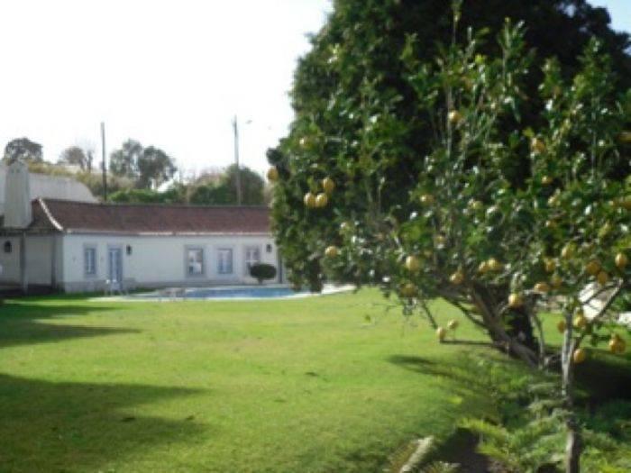 Quinta de Cima, Casas Novas, Portugal, international travel trends in Casas Novas