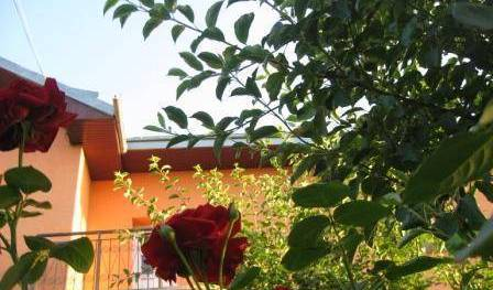 Lary Hostel - Search for free rooms and guaranteed low rates in Suceava 20 photos