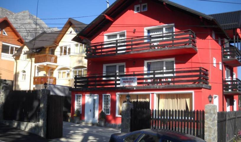 Pension Paunasul - Get low hotel rates and check availability in Busteni 31 photos