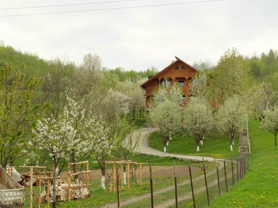 Pensiunea in Deal La Ancuta, Vadu Izei, Romania, coolest hotels in the world in Vadu Izei