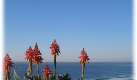 Blue Sky Mining Backpackers And Lodge - Search available rooms for hotel and hostel reservations in Durban 7 photos