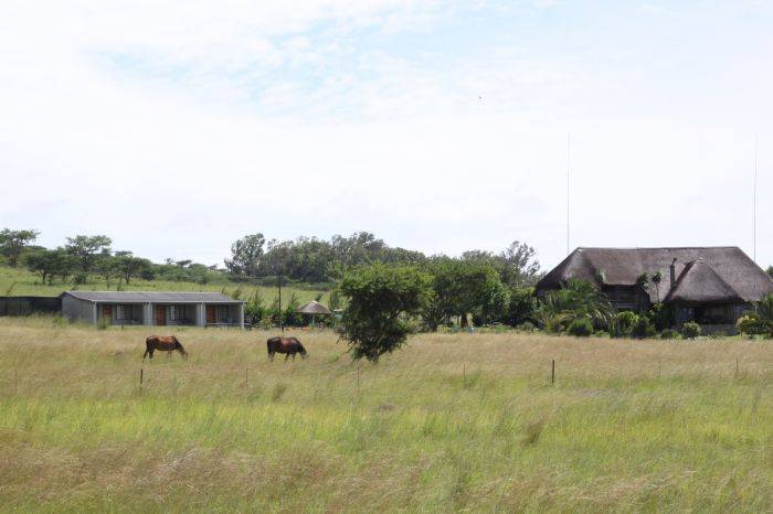 Drakensview Self Catering, Winterton, South Africa, 找到我附近做的事情 在 Winterton