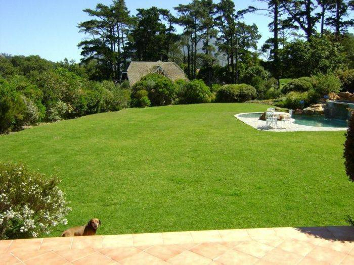 Tarragona Lodge, Cape Town, South Africa, alternative booking site, compare prices then book with confidence in Cape Town