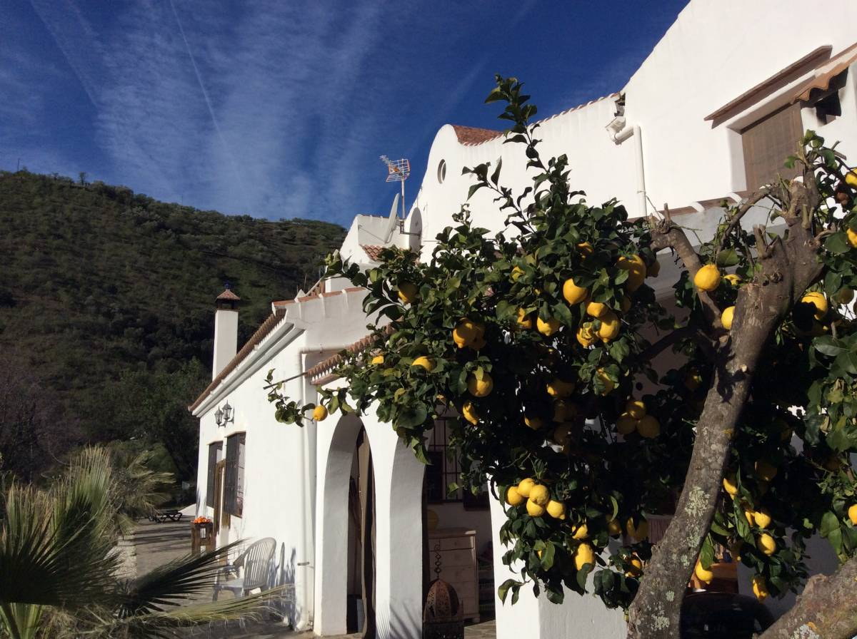 The House Of Oranges, Sedella, Spain, Spain hotels and hostels