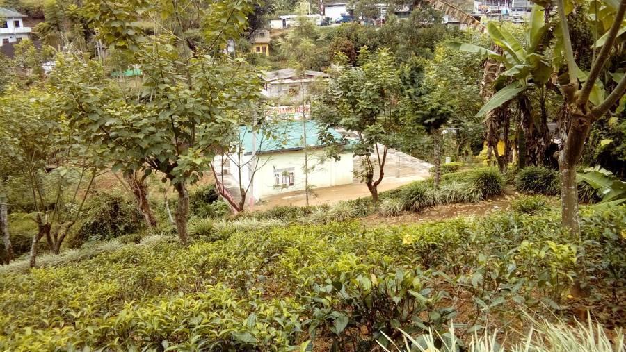 Akshaya Rest, Maskeliya, Sri Lanka, Sri Lanka hotels and hostels