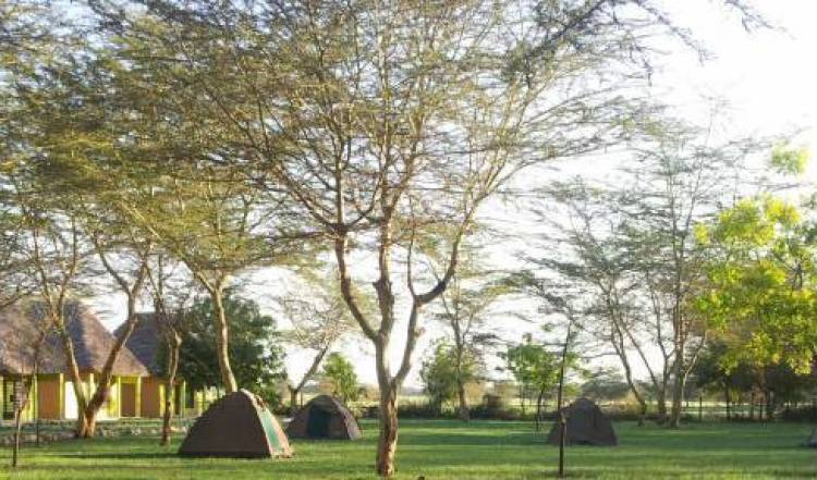Eco Boma Camp - Get low hotel rates and check availability in Mto wa Mbu 14 photos