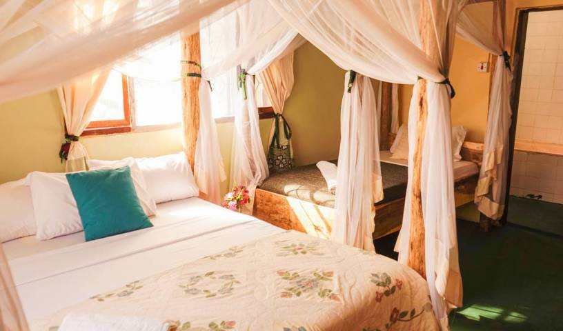 The Secret Garden Hotel, hotels with culinary classes in Kilimanjaro, Tanzania 19 photos